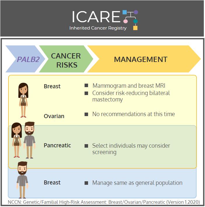 Icare Social Media Post April 2020palb2 Cancer Risks And Risk Management Inherited Cancer Registry Icare
